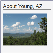 Young Arizona