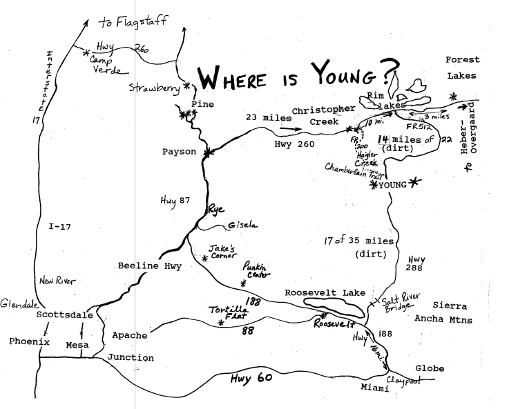 Map Of Young Arizona.Find Us Young Realty Partners Inc Young Arizona