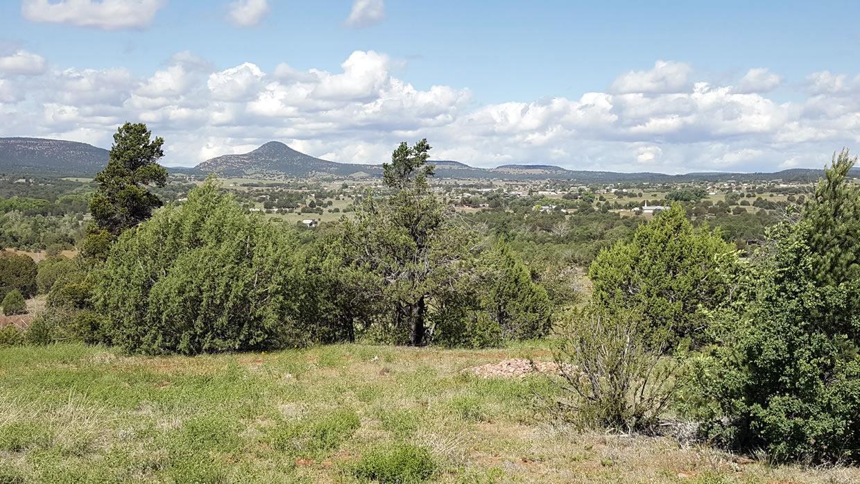 Young Arizona Valley